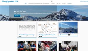 blogs_workshop